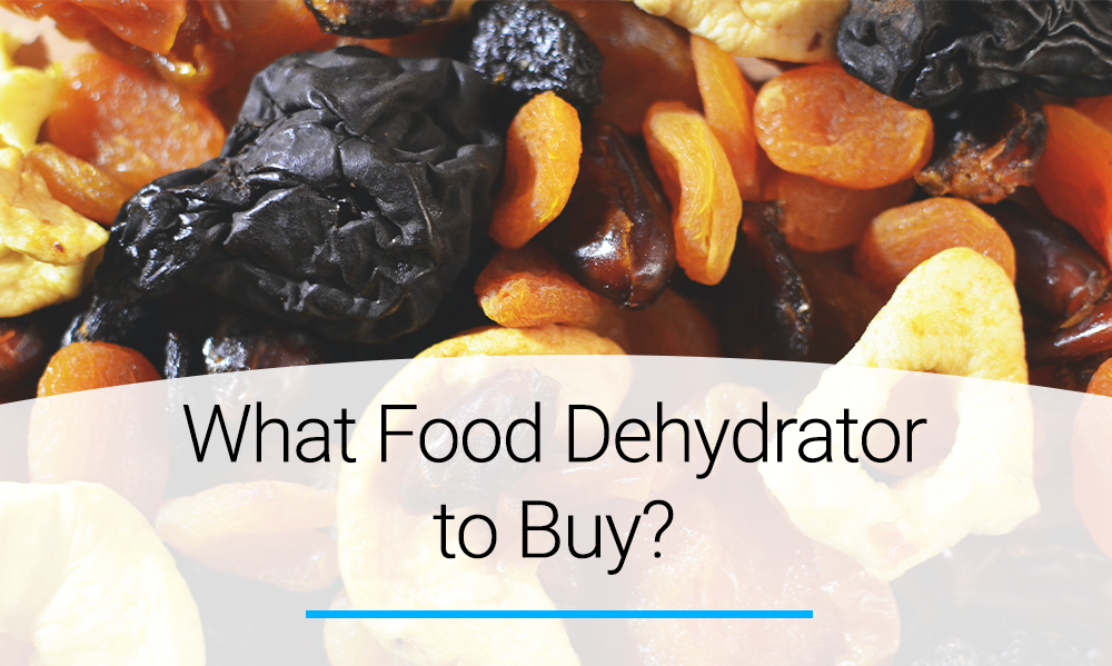 What food dehydrator to buy?